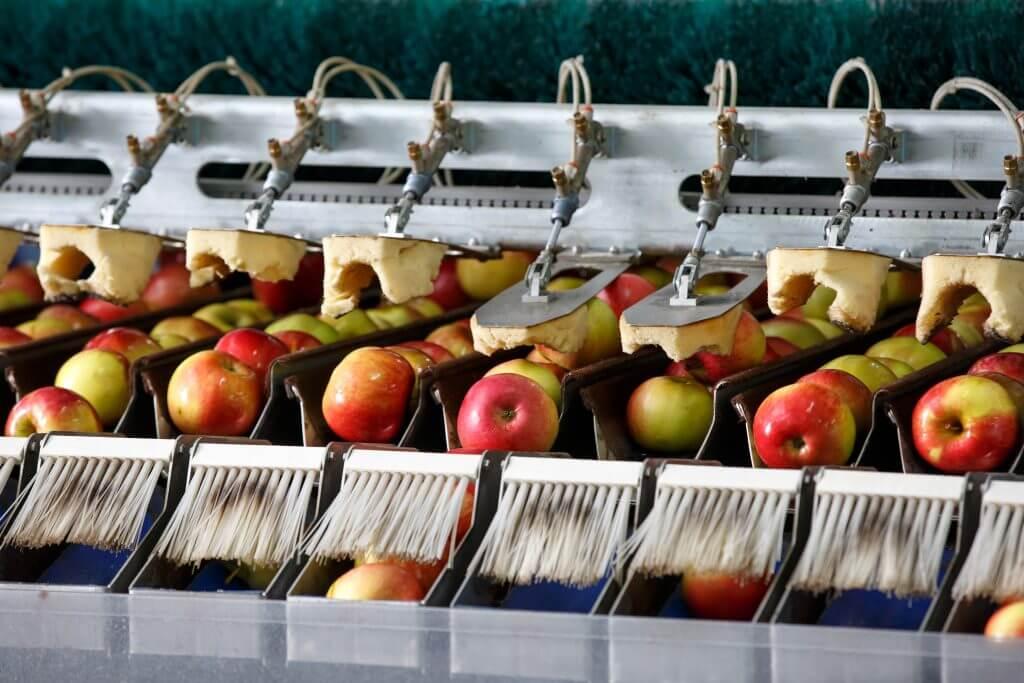 Contact-Food Safety Modernization Act FDA FSMA-ISO PROS #16