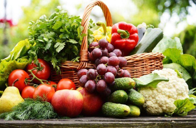 Home-Food Safety Modernization Act FDA FSMA-ISO PROS #16